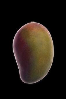 Mango fruit over zwart