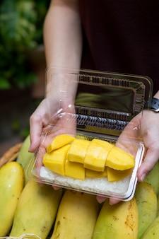 Mango tropisch fruit in houten mand
