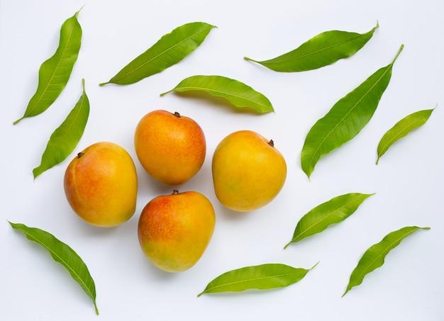 Mango, tropisch fruit met bladeren op een witte achtergrond. bovenaanzicht