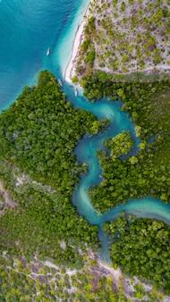 Mangroove-moeras bij kanga-strand, maffia-eiland