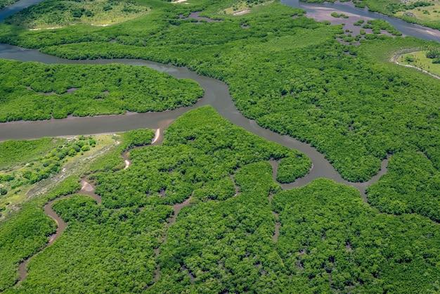 Mangrove recife pernambuco brazilië kwekerij van verschillende soorten luchtfoto