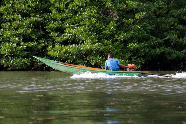 Mangrovebomen en mangrovebossen chanthaburi thailand