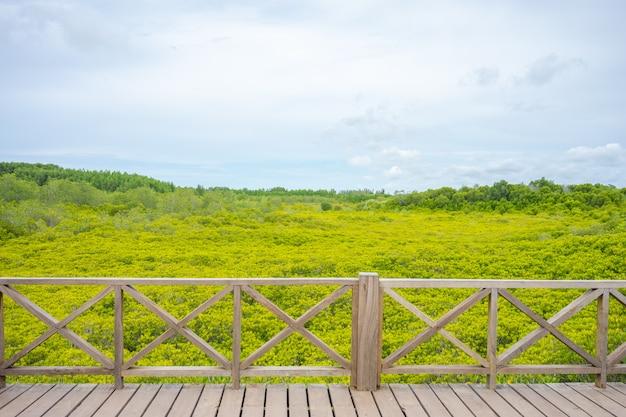 Mangrovebos ook bekend als de golden meadow prong