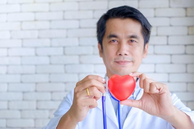 Mannelijke arts die rood hart rubbermodel en het controleren houdt.