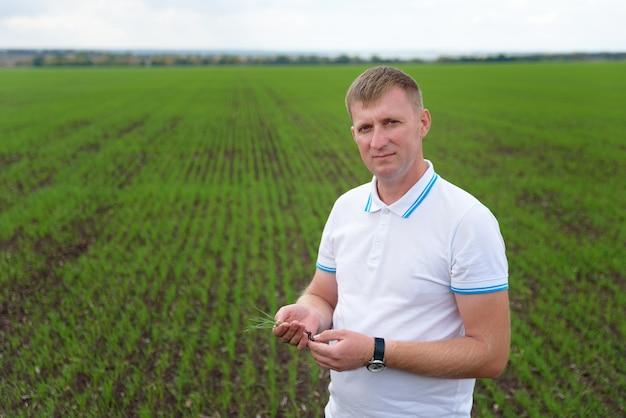 Mannelijke boer die een installatiemonster in het veld houdt