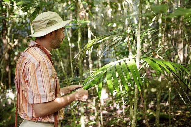 Mannelijke botanicus in gestreept shirt staat voor groene exotische plant, houdt zijn grote bladeren vast en bestudeert ze op ziekten terwijl hij de omgevingscondities en problemen in tropisch woud onderzoekt