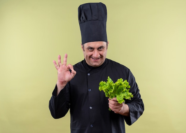 Mannelijke chef-kok die zwarte uniform draagt en kookhoed die verse sla houdt die ok teken toont dat zich over groene achtergrond bevindt