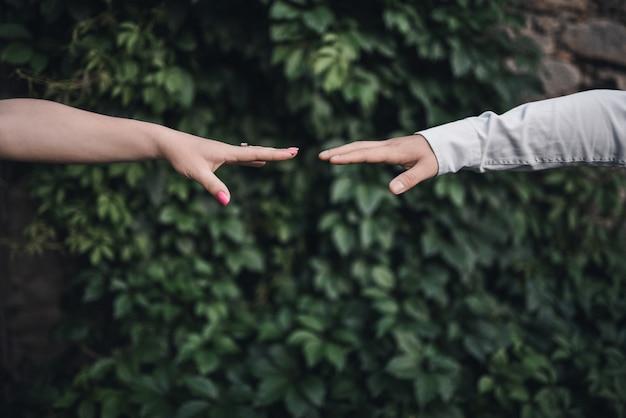 Mannelijke en vrouwelijke hand bereiken elkaar op een groene bladachtergrond