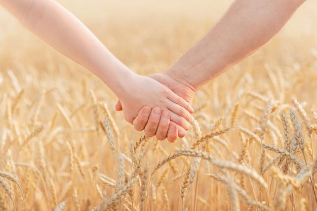 Mannelijke en vrouwelijke handen houden elkaar vast op de achtergrond van een tarweveld