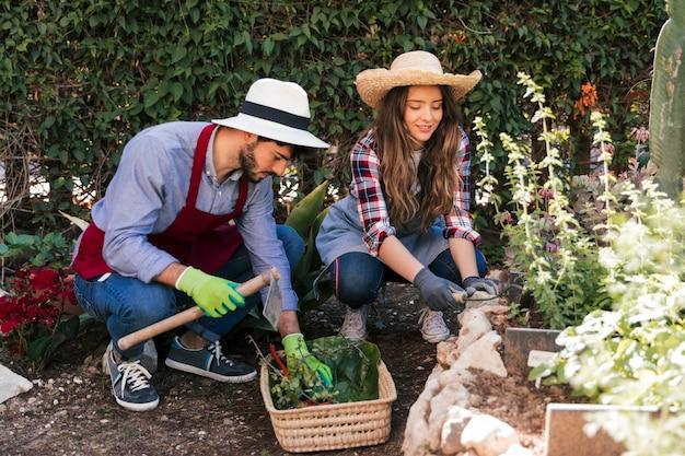 Mannelijke en vrouwelijke tuinman die in de tuin samenwerken