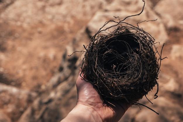 Mannelijke hand met een fragiel leeg vogelnest van bovenaf op het zonnige dagconcept van het lege nestsyndroom met kopieerruimte
