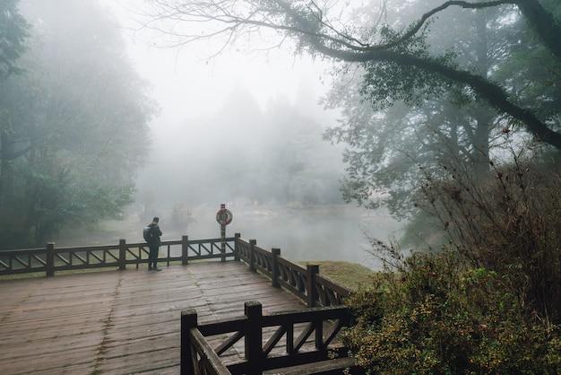 Mannelijke toerist die zich op houten platform met cedarbomen en mist op de achtergrond bevinden