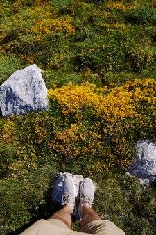 Mannelijke voeten staan op een steen tussen groen gras en gele wilde bloemen