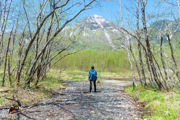 Mannelijke wandelaar die zich in het bos van kamikochi in de noordelijke alpen van japan bevinden.