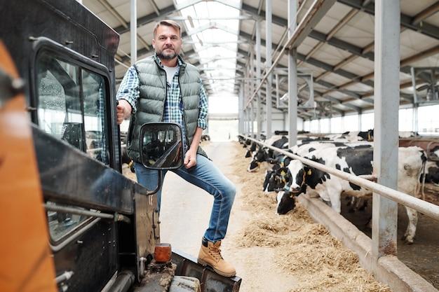Mannelijke werknemer van grote dierenboerderij die naar je kijkt terwijl je op werkapparatuur op het gangpad tussen rijen vee staat