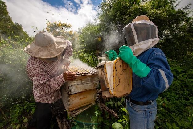 Mannen bijenteelt honing verzamelen met maskers