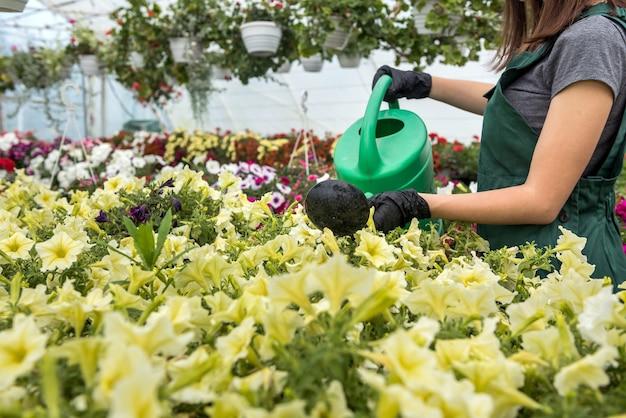 Mannenhandschoenen verzorgen en controleren de bloemen in de kas