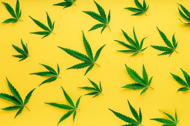 Marihuana plant cannabis cannabis bladeren patroon groene hennep bladeren op kleur gele achtergrond