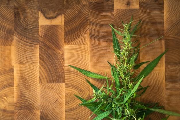 Marihuanainstallatie met bladeren en toppen op houten.