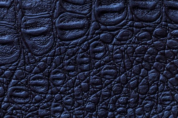 Marineblauwe lederen textuur achtergrond, close-up