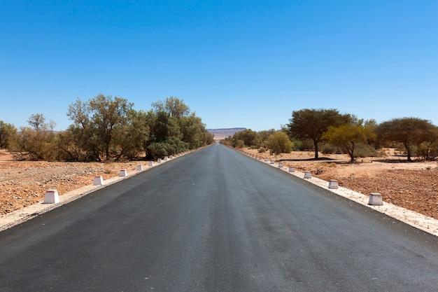 Marokkaans woestijnlandschap met planten en bergketen
