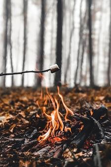 Marshmallow aan spiesjes wordt op de brandstapel gebakken. geroosterde marshmallows open vuur aan het spit