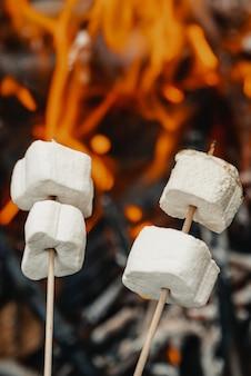 Marshmallow op een stok gebakken op de brandstapel