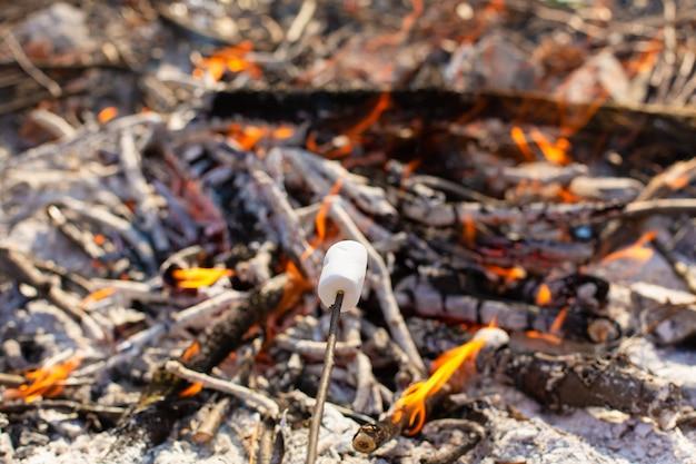 Marshmallows bakken bij een vreugdevuur