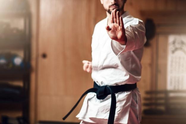 Martial arts-meester op vechttraining in de sportschool