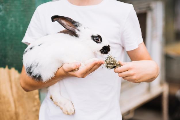 Medio sectie van een jongen die gras voeden aan in hand konijn