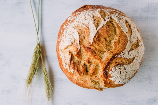 Mediterraan brood een tarwe op een witte achtergrond genaamd pan de payes of pa de pages.