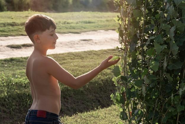 Medium shot jongen met blad