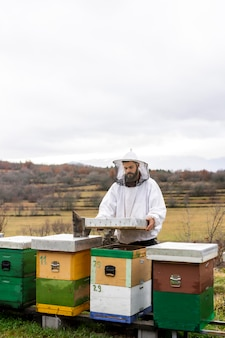 Medium shot man aan het werk met bijen