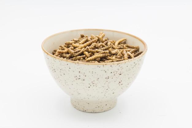 Meelwormen schaaldieren tenebrio molitor geïsoleerd