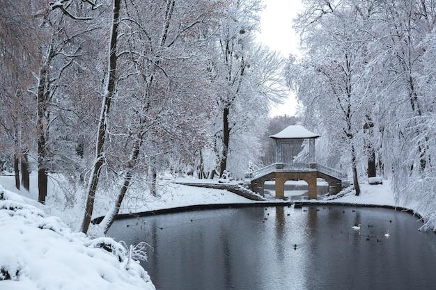Meer dichtbij de chinese brug in het park