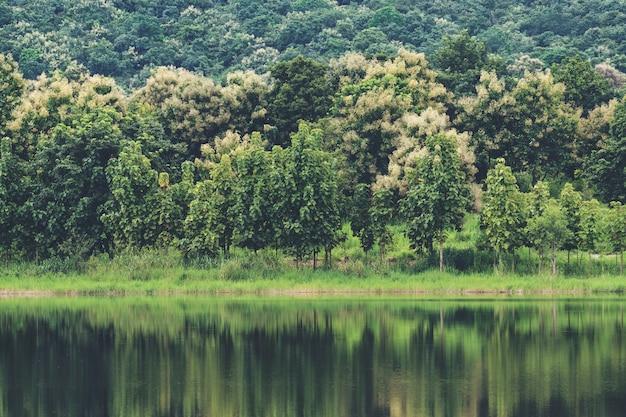 Meer en natuur