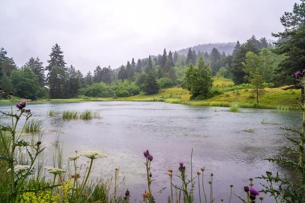 Meer in de bergen in regenachtige dag, boven-svaneti. georgië.
