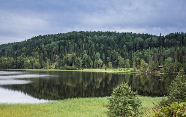 Meer in karelië. zomer natuurlijke landschappen in reizen. ten noorden van rusland