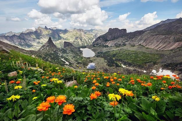 Meer van berggeesten, natuurpark ergaki, siberië