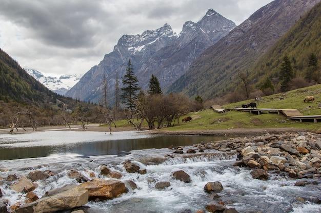Meertje en berg siguniang is de hoogste top van het qionglai-gebergte in west-china