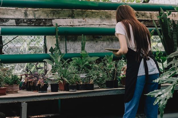 Meisje agronoom houdt zich bezig met de botanische tuin.