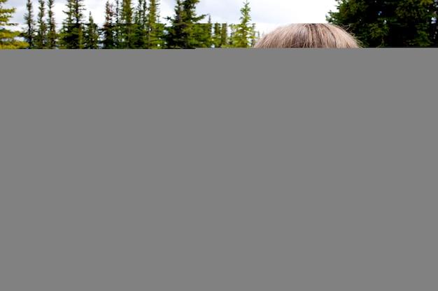 Meisje dat beeld met een digitale camera, de kale sleep van heuvels, het nationale park van de jasper, alberta, canada neemt