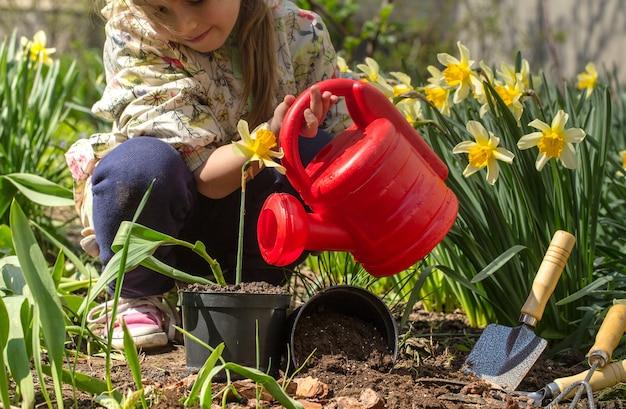 Meisje dat bloemen in de tuin plant