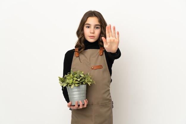 Meisje dat een geïsoleerde plant houdt die eindegebaar maakt