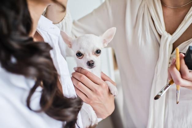 Meisje dat een kleine huisdierenhond houdt