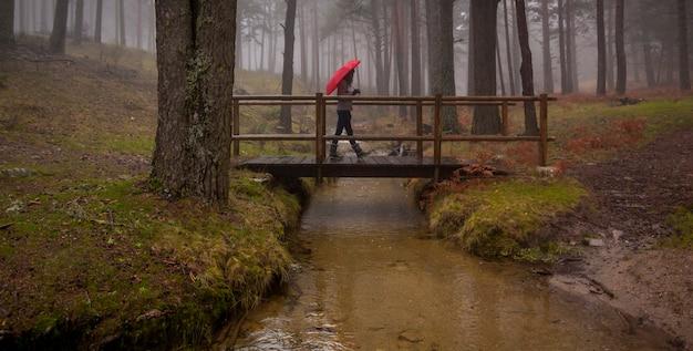 Meisje dat met rode paraplu door het bos loopt.