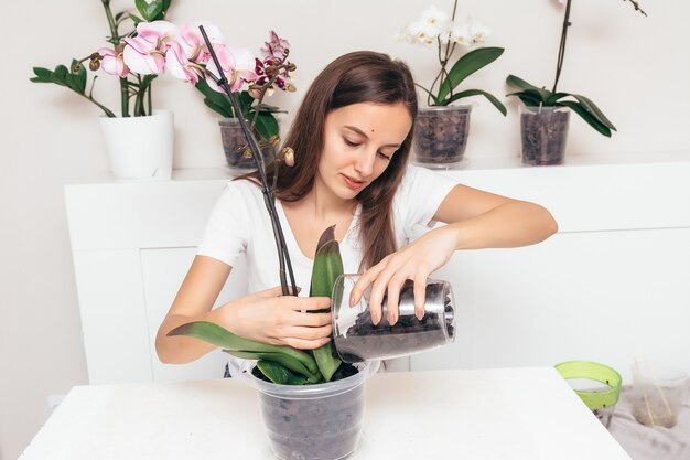 Meisje dat orchideebloemen plant in een transparante pot