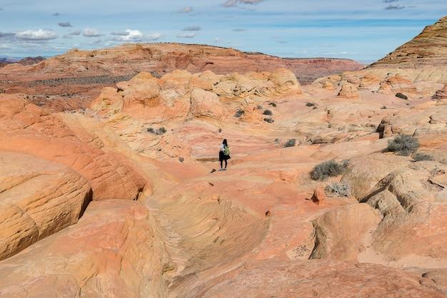 Meisje dat zich op de bovenkant van rotswoestijn bevindt, manier aan de golf