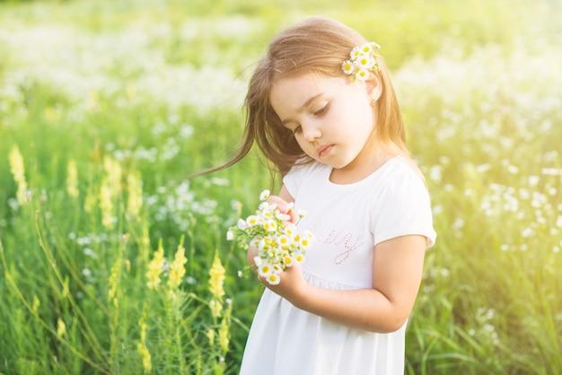 Meisje dat zich op het gebied bevindt dat witte bloemen bekijkt