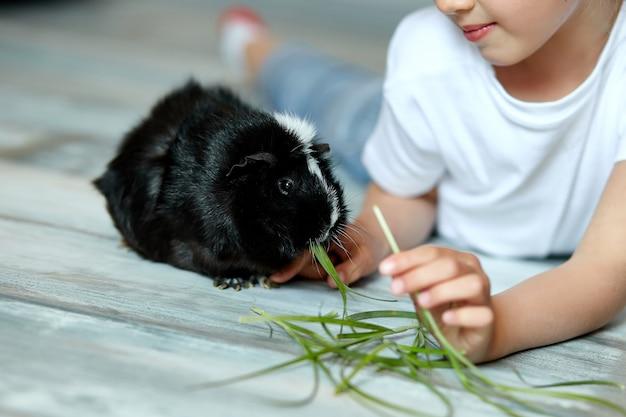 Meisje die en zwart proefkonijn, huisdier houden voeden.